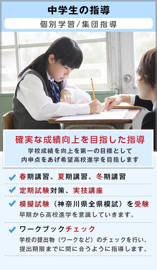 自立型個別学習の成績Apシステム|T中学生の指導